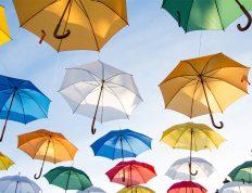 Umbrella-Companies-Advantages-Disadvantages-Limited-Companies